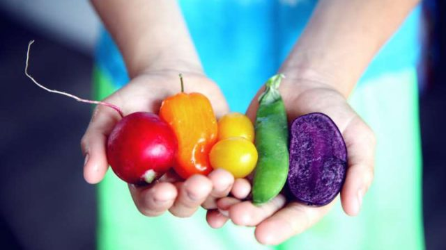 色とりどりの野菜を乗せた手のひら